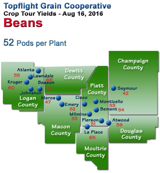 Crop Tour 2016 Beans